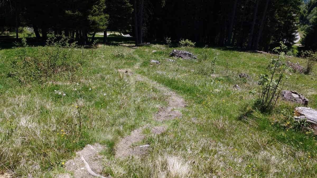 Weiter geht's auf dem Trail in Richtung Plattenrain.