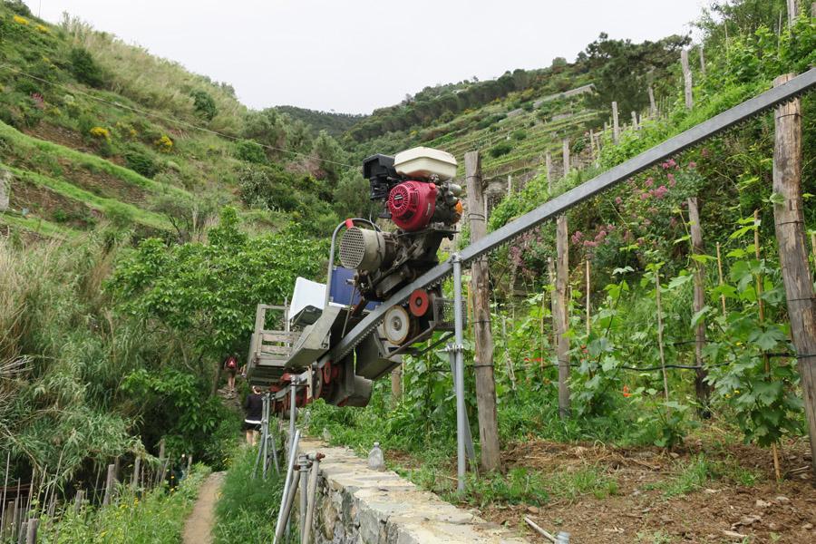 Zahnradbahn zum Bewirtschaften der Weinterrassen