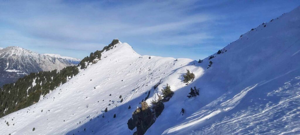 Skitour Wald
